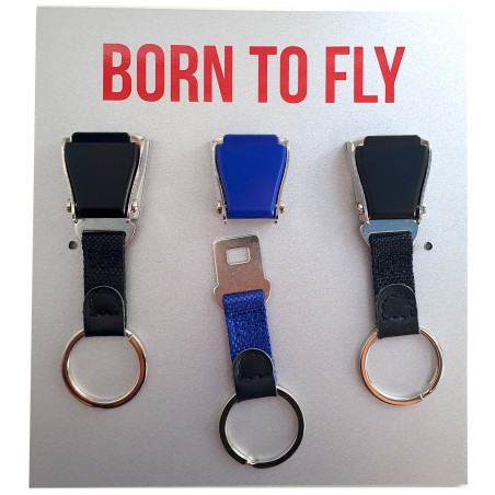 Born to Fly Keys Wall Stand