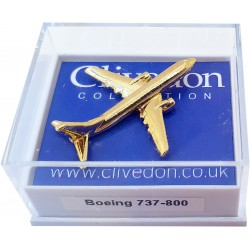 Boeing 737-800 3D (Gold)