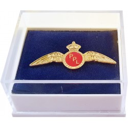 PPL Wings