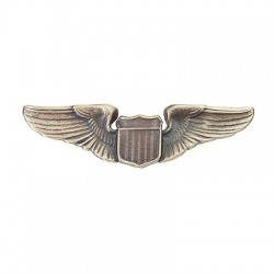 USAF Pilot Large Insignia