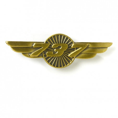 Boeing 737 Wings