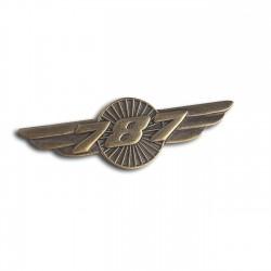 Boeing 787 Dreamliner Wings