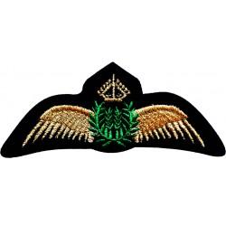 Emblema brodata Civil Pilot...