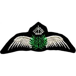 Civil Pilot Silver Wings...